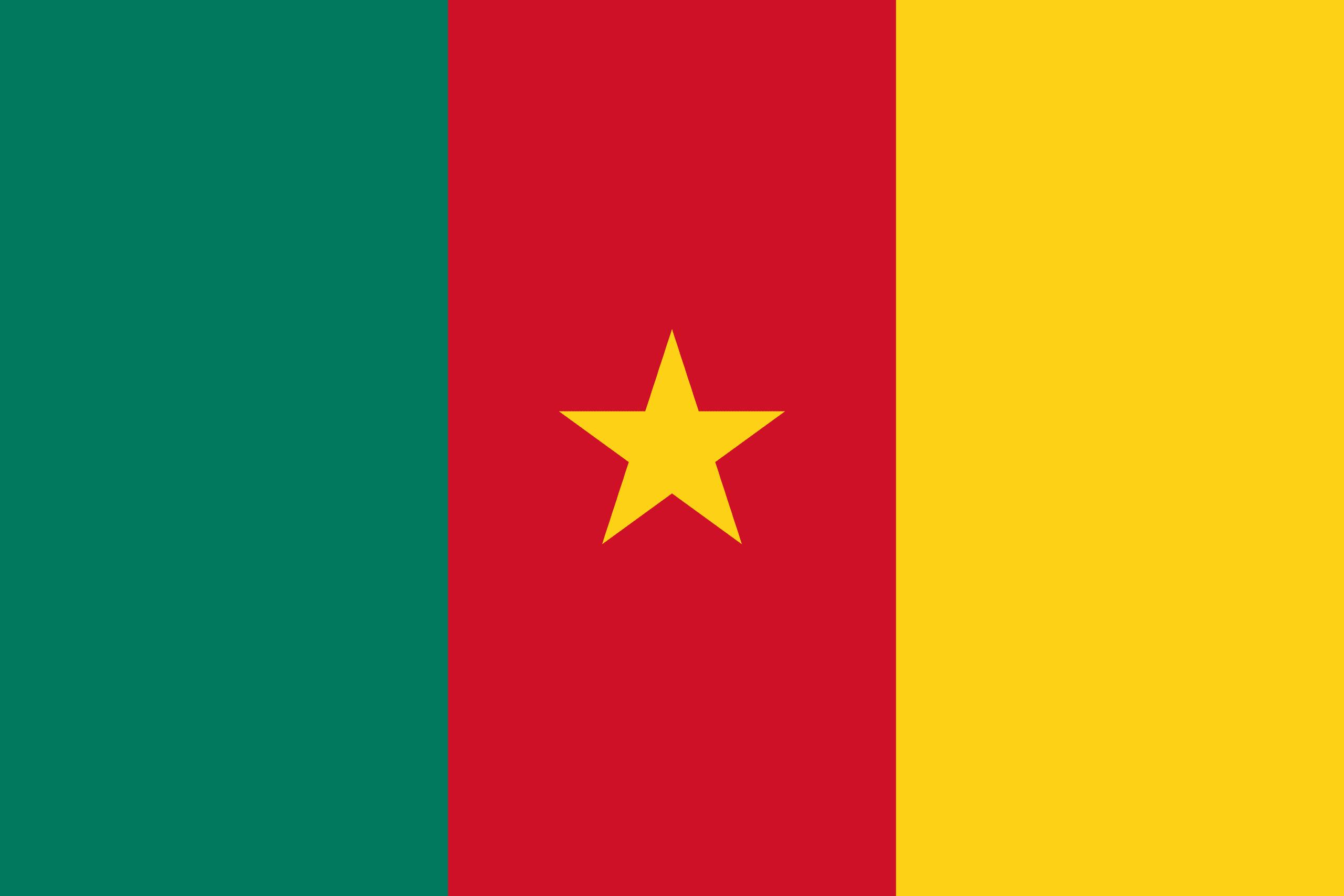 Bildresultat för kamerun flagga